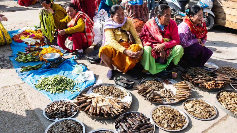 Ima-Keithel-India-market-Outside-Ima_Keithel_informal_dried_fish_sellers-EM-Photo-credit-Eileen-McDougall-1-1536x864