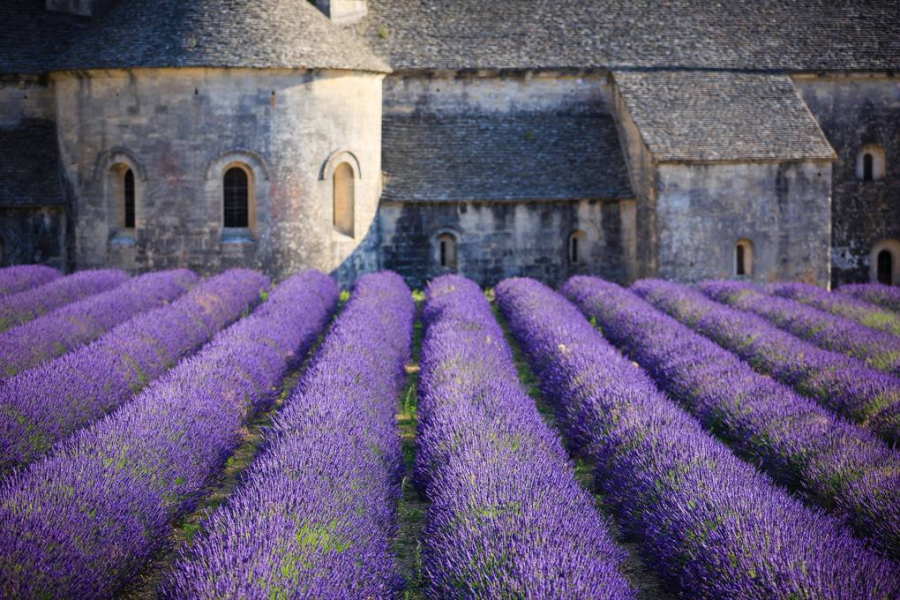provence-france-gettyimages-481275036