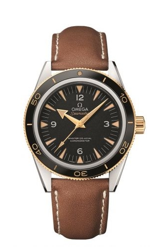 Seamaster 300 Master Co-Axial Steel Stainless Steel / Yellow Gold / Black / Strap
